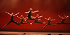 Dance Source Houston: TWCD 2010 : Photography: amitava Sarkar, http://insightphotography.smugmug.com/