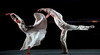 Houston Ballet: Body, Soul, and Gershwin - Forgotten Land (Kylian) : FORGOTTEN LAND (1981) 