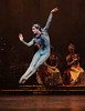 Houston Ballet: Sleeping Beauty (2011 Stevenson) : Photography:  Amitava Sarkar, http://insightphotography.smugmug.com/