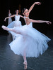 Houston Ballet: The Dancer's Eye - Gala 2010 : A view from the wings of the Houston Ballet 2010 Gala
